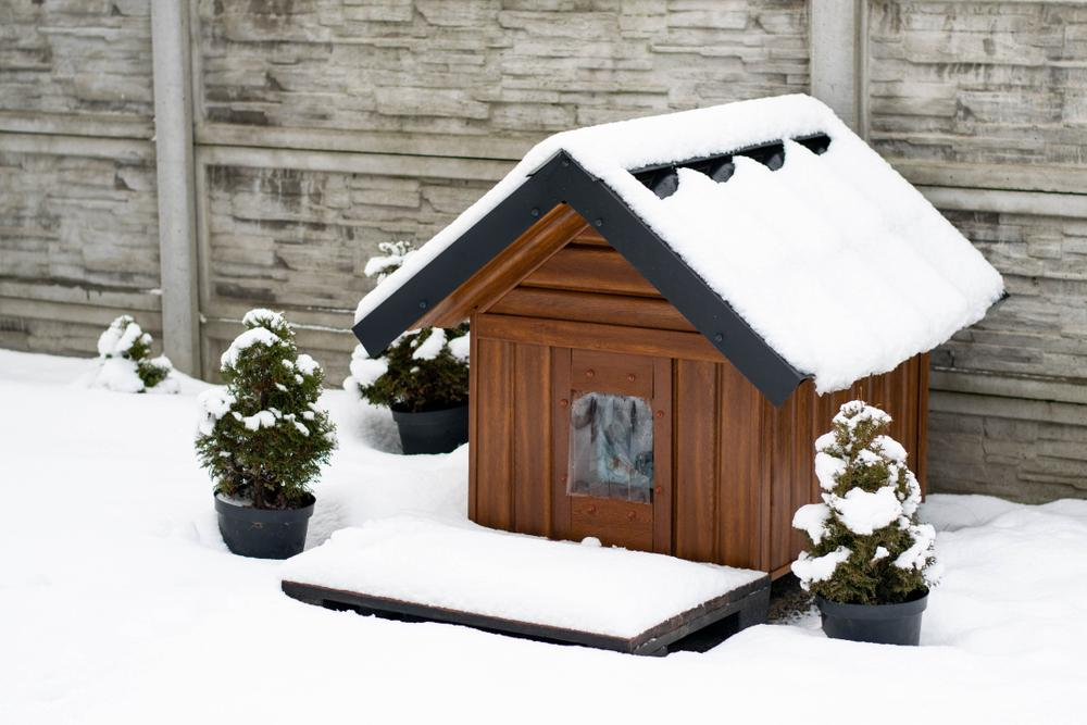 An empty winterized dog house covered in snow